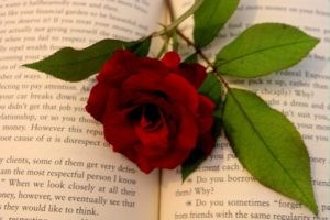 Are you a lover of romance in literature?